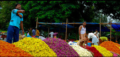 flower market in India