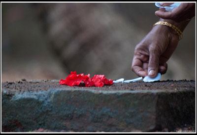 Laying flowers in Kerala