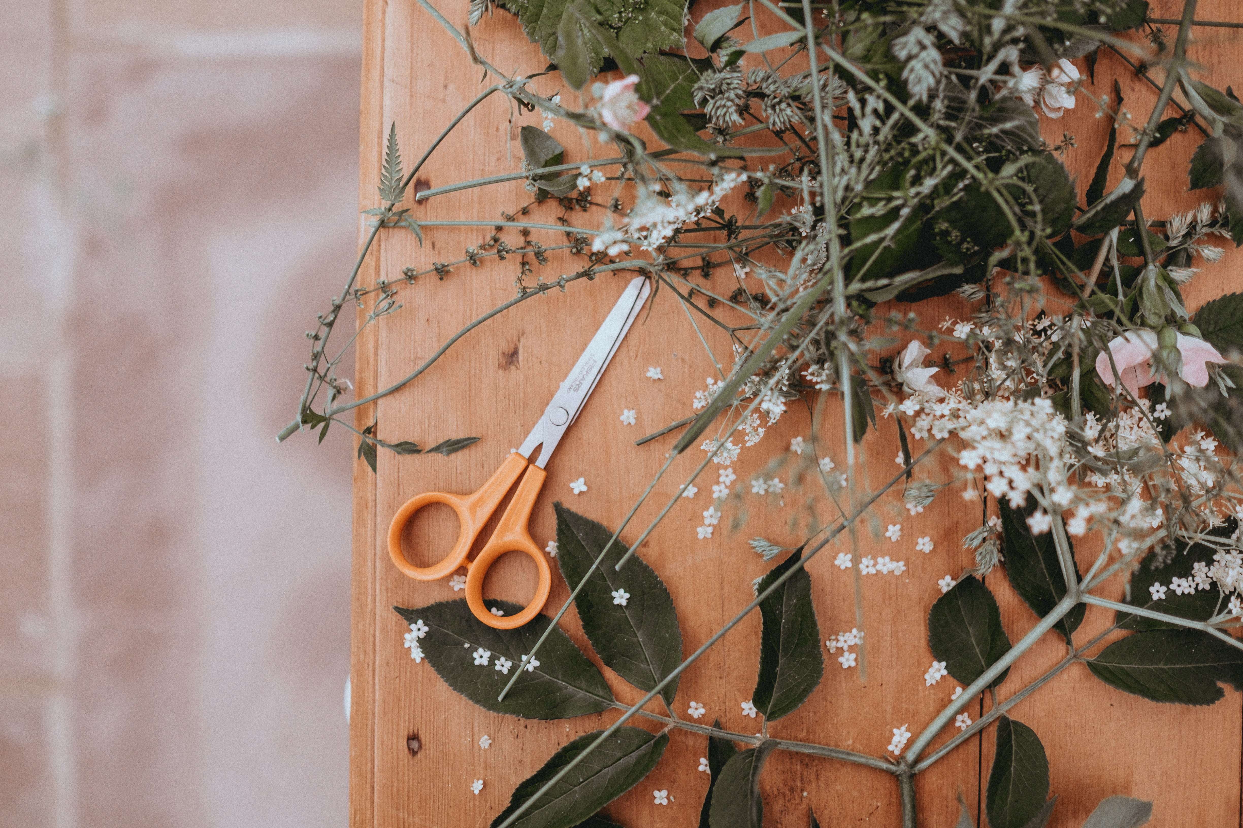 Best Flower Clippers in 2019